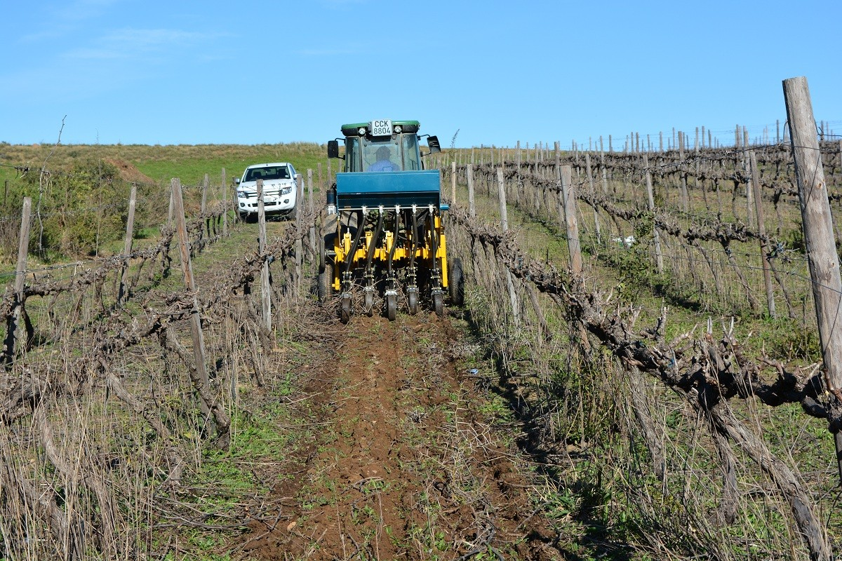 zerotill vineyard planting cover crop conservation tillage